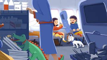 Alligator on airplane
