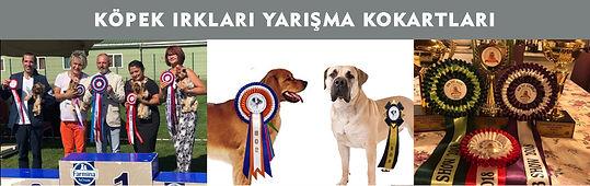 Köpek Irkları Yarışma Kokartları.jpg