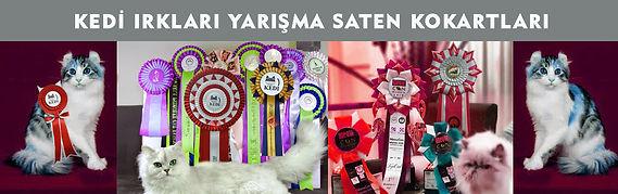 Kedi Irkları Yarışma Kokartları.jpg