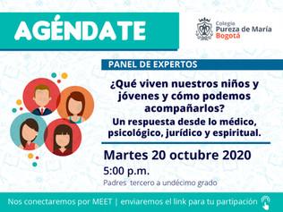 Panel de expertos 20 de octubre