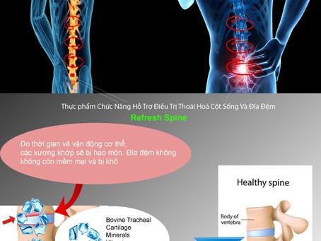 Nguyên nhân thoát vị đĩa đệm và cách điều trị