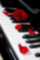 Rosen Tastatur.jpg