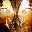 Clozinger - Forest Echo EP