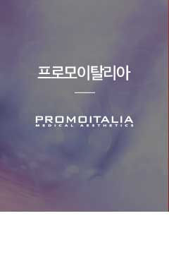 프로모이탈리아 PROMOITALIA