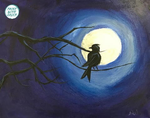 Bird Silhouette Night