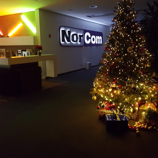 Büro_Weihnachtsbaum_2017.jpg