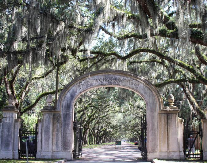 Summer in Savannah - Part 2