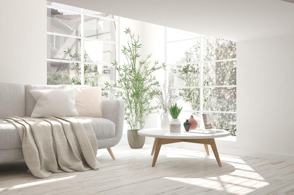 light sofa w_pillows.jpg