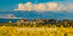 La Cité de Carcassonne 2