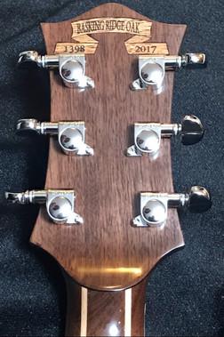 Guitar Neck cropped.jpg