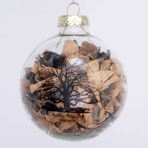 2019 Limited Edition Glass Shavings Ornament