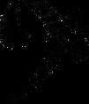 rickvanderzwet-Bass-clef-1 (1).png