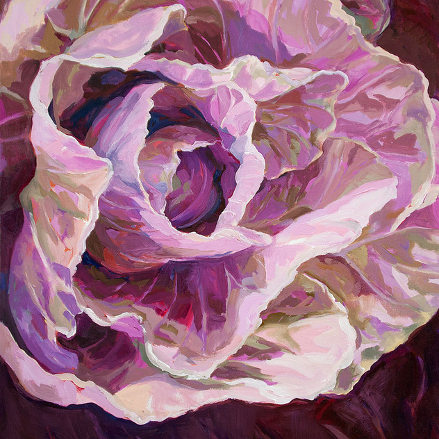 cabbage low res.jpg