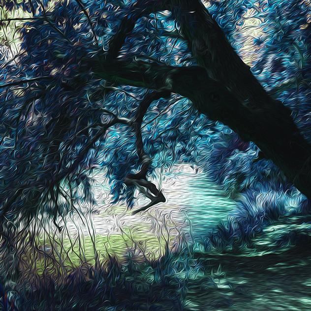 TreeOverWater.jpg