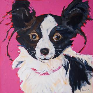pink dog rob.jpg