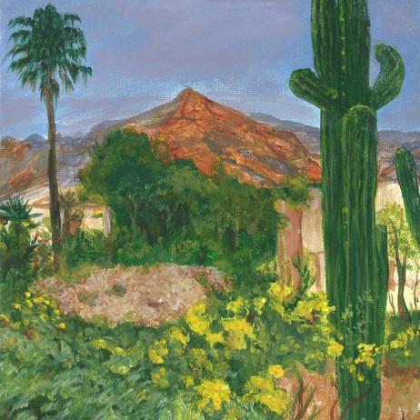 Desert Home.jpg