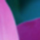 Screen Shot 2018-09-08 at 9.48.34 AM.png
