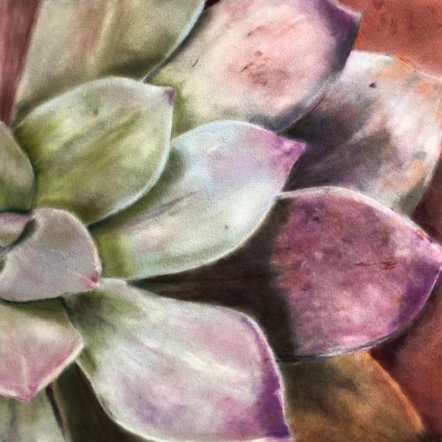 Pastel cactus.jpg
