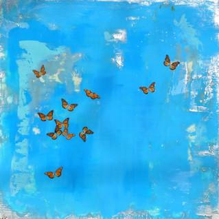 Monarch Migration.jpg