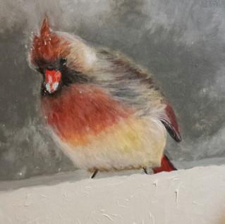 Tina Karagulian_Mrs. Cardinal.jpg