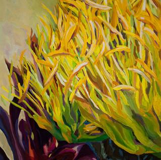 agave bloom low res.jpg