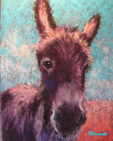 Donkey in Sunlight ii, 8x10,    morawski