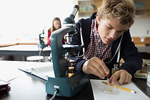Student looking down microscope
