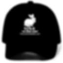 tcr hat.png