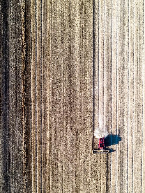 Harvesting Matrix