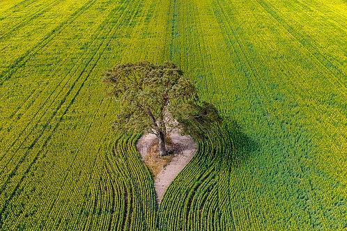 Nature Unzipped