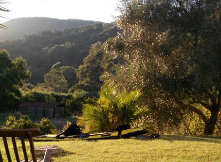 Retiro de Yoga, Meditación y Senderismo | 26, 27 y 28 de Julio | Espacio Bitali