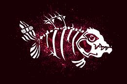 MeberShipCarte_Requin_avant_v1.0.png