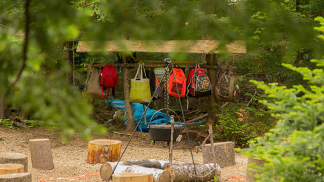 Forest School Feastured Story Video