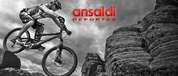Campaña Mundial Ansaldi