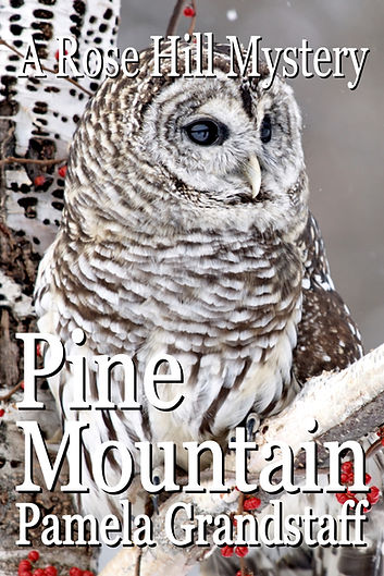 pine mountain.jpg