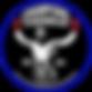 Champions kickboxingklubb logo