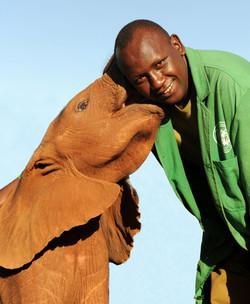 Elephant orphanange rescue program in Kenya.jpg
