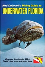 Guide-to-underwater-florida-201x300.jpg