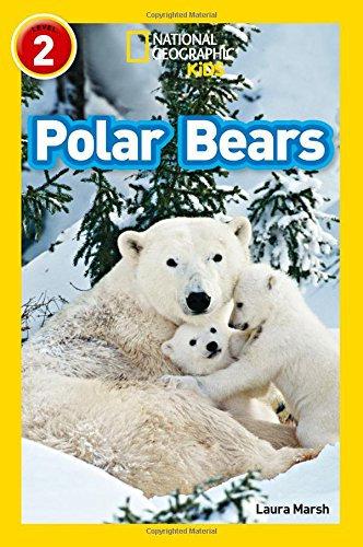 Osos Polares Level 2