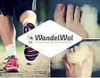 wandelwol logo.jpg