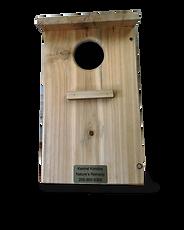 kestral box2.png
