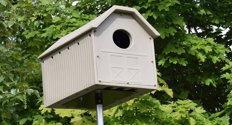 Owl box in the spring