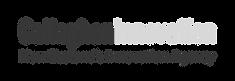 Callaghan-Innovation-2020-Horizontal-log