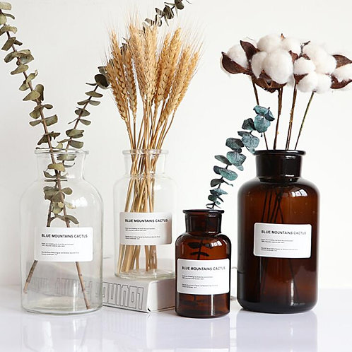 Bali - Hydrophonic glass vase - botanical Jar Vase