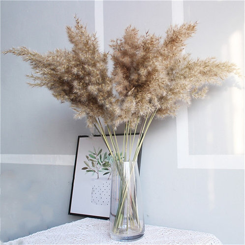 Dried Pampas grass Bouquet - Real Dried Natural Plants for Boho Decor