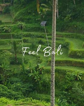 Feel Bali.png