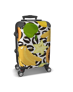 Graos Suitcase.png