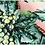 Thumbnail: Barroca - Colourful Coat and Dress