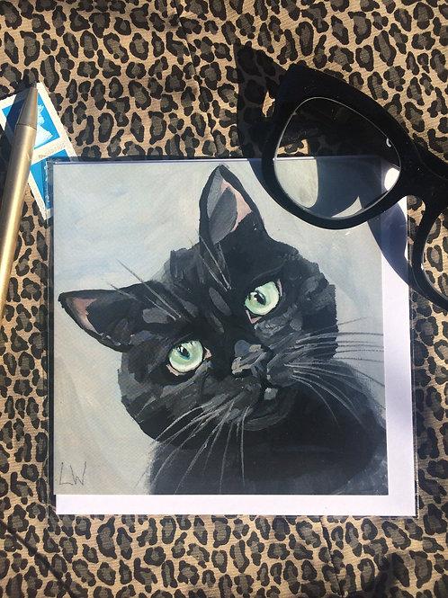 Black Cat - Shadow