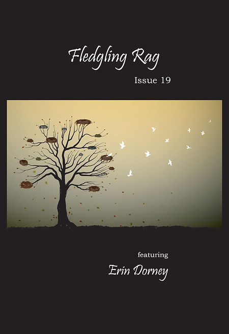 Fledgling Rag 19 Cover.jpg